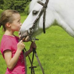 Atelier Equitation Juniors Poney 6 à 14 ans- 92