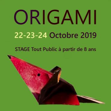 Atelier Atelier origami - 8/15 ans - Toulouse 31
