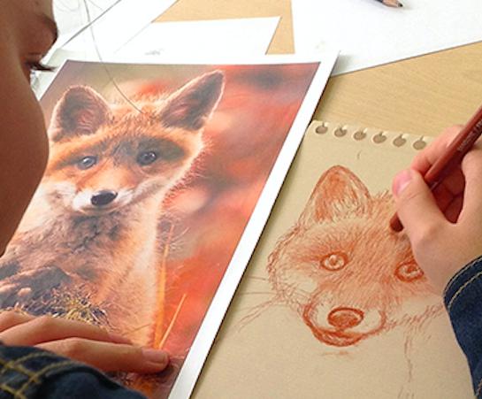 Atelier de dessin/BD/illustration - 7/14 ans - En visio